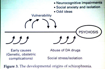 introduction schizophrenia research paper